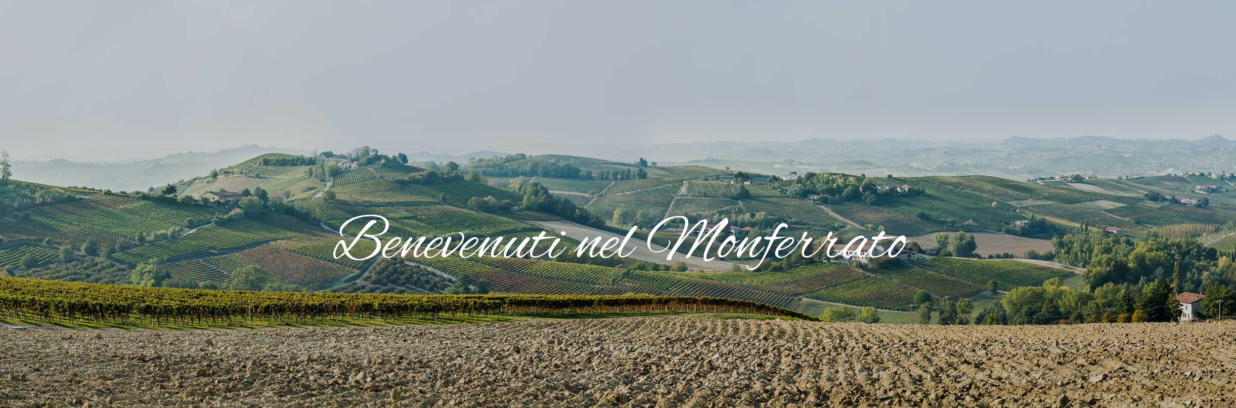 Monferrato, langhe, mondo germoglio